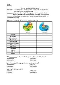 Plant Cell vs. Animal Cell - Worksheet
