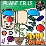 Plant Cells Clip Art Set {Educlips Clipart}