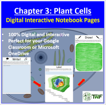 Plant Cells - Digital Interactive Notebook Pages