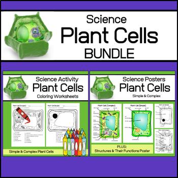 Plant Cells | Science Bundle
