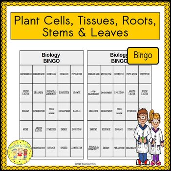 Plant Cells, Tissues, Roots, Stems, and Leaves BINGO