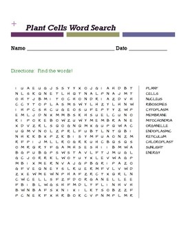 Plant Cells Word Search