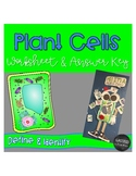 Plant Cells Worksheet and Answer Key