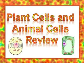 Plant Cells and Animal Cells Review (Flipchart) *ActiVote or ActivExpression*