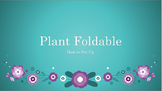 Plant Characteristics Foldable with notes and diagrams