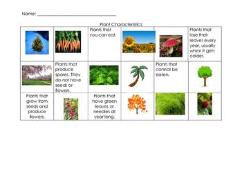 Plant Characteristics Sort