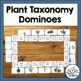 Plant Classification Dominoes - Plant Taxonomy Review Activity