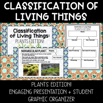 Plant Classification: Engaging Presentation + Student Graphic Organizer!