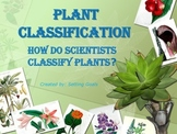 Plant Classification SL1b