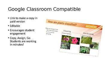 Plant Classification Sort Interactive Slideshow - Google Classroom Compatible