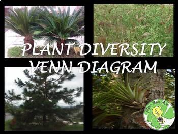Plant Classification Venn Diagram