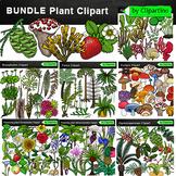 Plant Clip Art Bundle