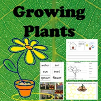 Plant Cycle- A pack about growing plants and what plants need