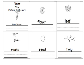 Plant Dictionary
