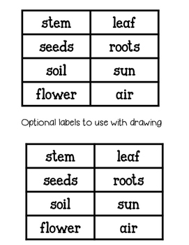 Plant Directed Drawing with Labels