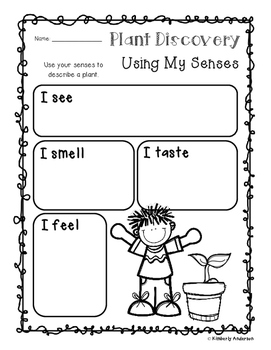 Plant Discovery / Observation / Using Senses Chart