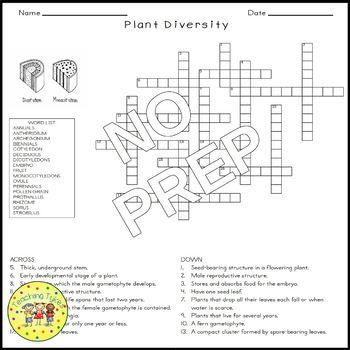 Plant Diversity Crossword Puzzle