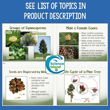 Plants: Diversity and Reproduction PowerPoint and Notes