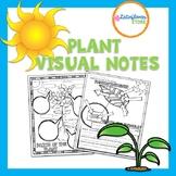 Plant Doodle Notes