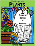 Plant Emergent Reader with Activities {Facts About Plants & Seeds} Kindergarten