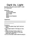 Plant Experiment Dark Vs. Light