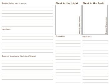 Plant Experiment Data Collection Booklet (Scientific Inquiry)
