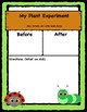 Plant Experiment Journal