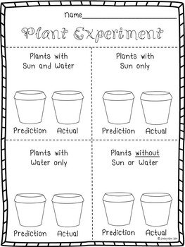 Plant Experiment (Plant Needs)