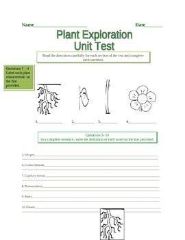 Plant Exploration Assessment
