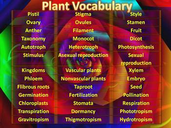 Plant Flash Cards for Cell Phones, MP3 Players & Word Wall Words