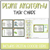 Plant & Flower Anatomy Task Cards