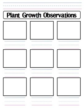 Plant Growth Observation Wo... by Shannon Allison ...