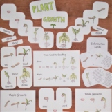 Plant Growth Pack: 3-part Montessori cards, classroom post