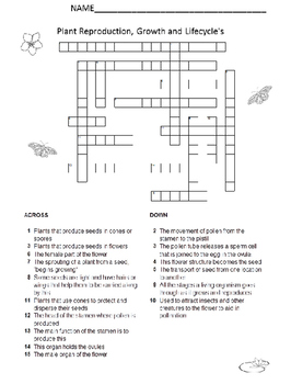 Plant Growth, Reproduction and Life Cycle Crossword Puzzle and Key