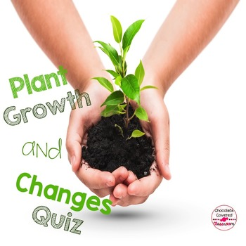 Plant Growth and Changes Quiz