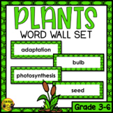 Plant Growth and Changes Editable Word Wall