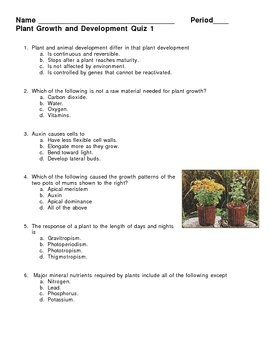 Plant Growth and Development Quiz 1