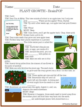 Plant Growth for BrainPOP video