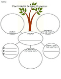 Plant Habitiat Graphic Organizer and Writing Prompt