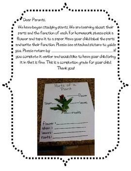 Plant Homework Letter