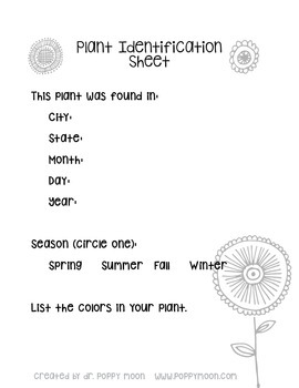 Plant Identification Worksheet Packet