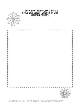 Plant Identification Worksheet Packet