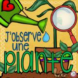 FRENCH Plant Journal J'observe une plante