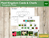 Plant Kingdom: Charts and Cards