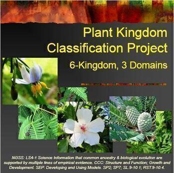 Plant Kingdom Classification Project