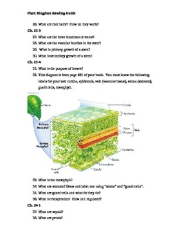 Plant Kingdom Guided Reading Questions (Biology Outline)