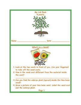 Plant Lab Book & Answer Key
