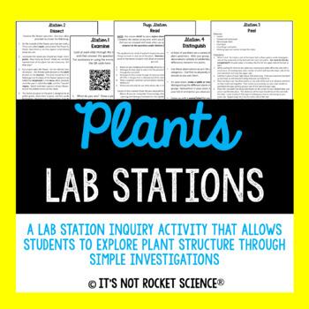 Plant Structure Lab Station Activity