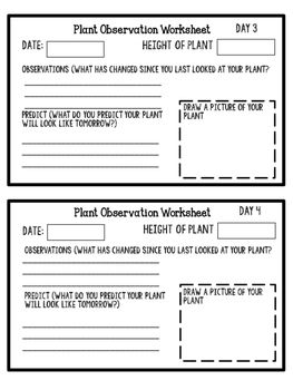 Plant Lab Worksheet