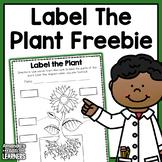 Plant Labeling Worksheet - Free